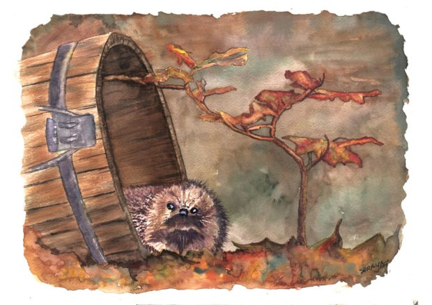 aquarela ouriço watercolour hedgehog