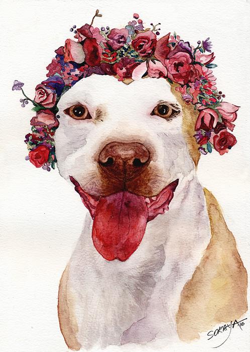 aquarela-cachorro-shakira-isabel-web